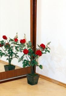 Розовый куст  0780A